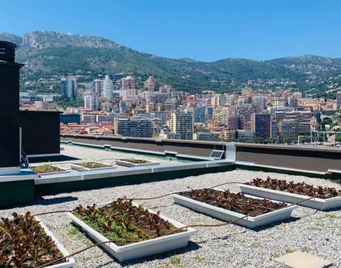 «Зелёные крыши» Монако