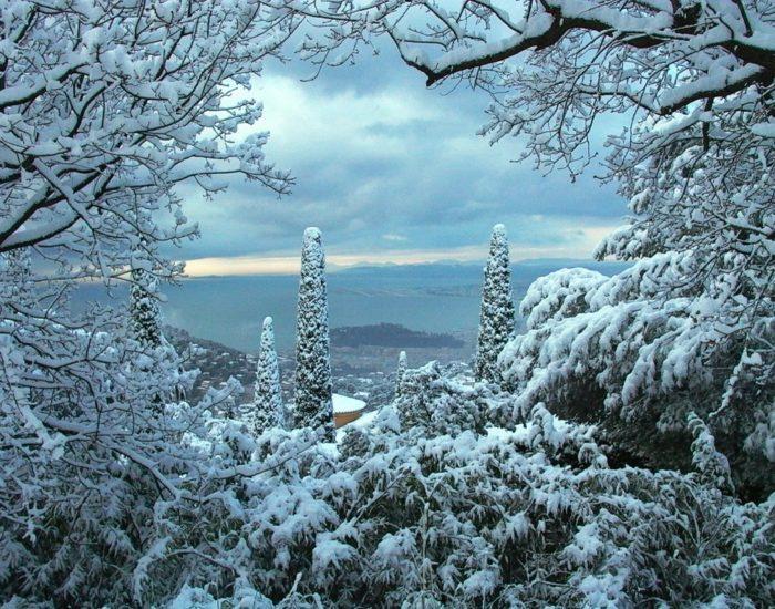 Зимний вечер в Ницце